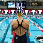 Swimmer Strength: an Overview